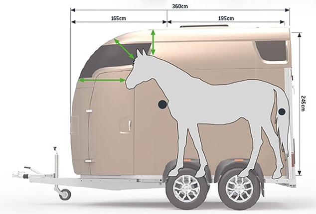 Sirius Pferdeanhänger Sirius S77, Sirius S77 Polyester, Pferdeanhänger Abbildung mit Pferd, Erklärung Abstand für Pferd, Ansicht von seitlich