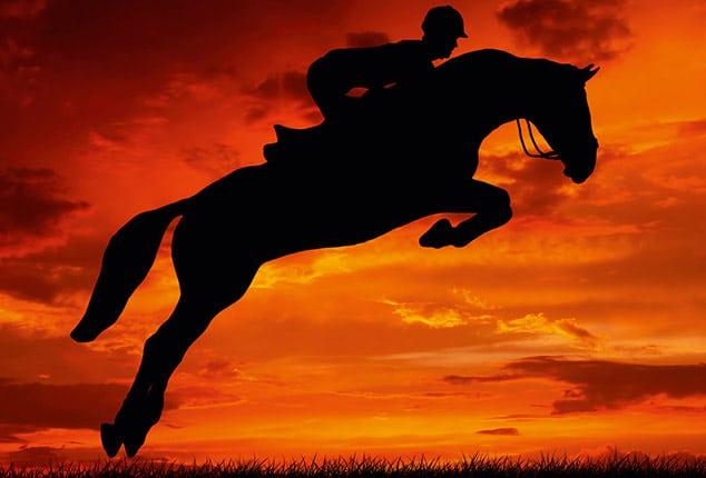 Sirius, springendes Pferd, Aufnahme im Freien, schwarzes Pferd, Hintergrund: orange, rot