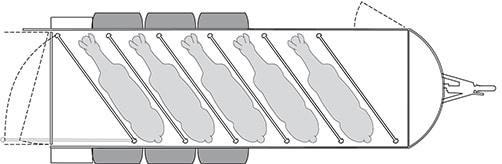 Anhänger Österreich, Pferdeanhänger, Sirius S190 Alu, Pferdeanhänger Sirius S190 Alu Islandic, Technische Ansicht, Boxenansicht Sirius S190 Alu Islandic, Ansicht von oben auf den Pferdeanhänger, Farbe schwarz/weiss, geeignet für fünf Pferde